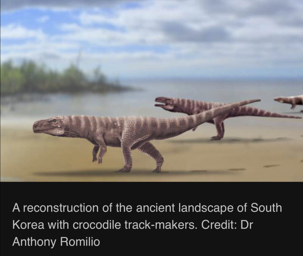 Early Crocodiles used to walk on 2 Legs - The Wall Post