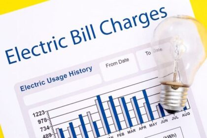 Celebrities' express concern over high electricity bills - The Wall Post