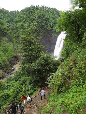 Five drown while taking selfie in Kalmandvi waterfall, Palghar - The Wall Post
