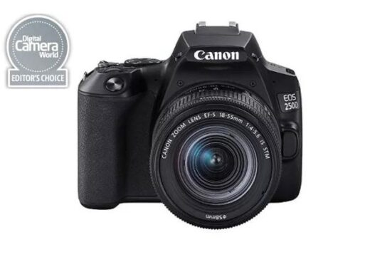 Gadget Insights - Best cameras for beginners- Take your photography to next level - Canon EOS rebel SL3 - The Wall Post